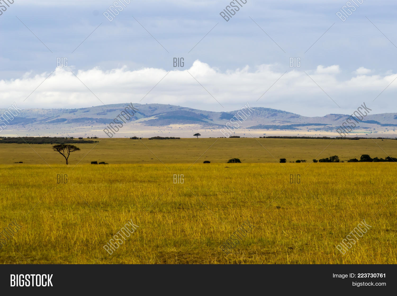 Majestic Maasai View Savannah Powerpoint Template Majestic Maasai