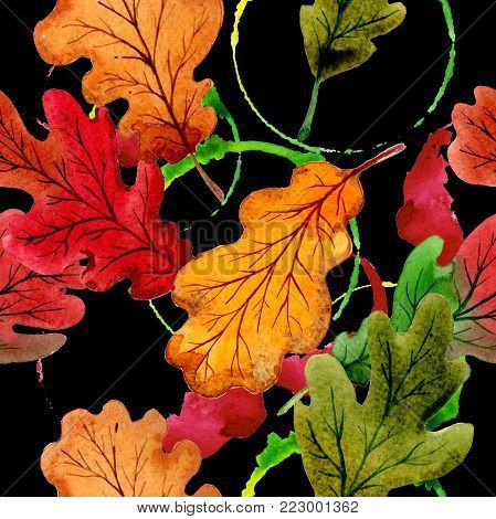 Autumn leaf of oak pattern in a hand drawn watercolor style. Aquarelle leaf of oak for background, texture, wrapper pattern, frame or border.