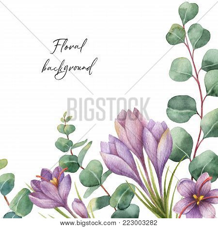 Watercolor hand painted green floral card with eucalyptus and flowers of saffron isolated on white background. Healing Herbs for cards, wedding invitation, posters, save the date or greeting design.