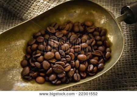 Scoop & Coffee Beans