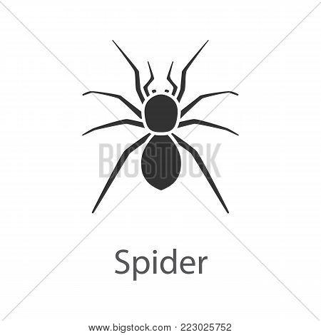 Spider glyph icon. Arachnida. Silhouette symbol. Negative space. Vector isolated illustration
