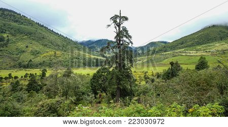 Mountain Scenery Of Trongsa, Bhutan