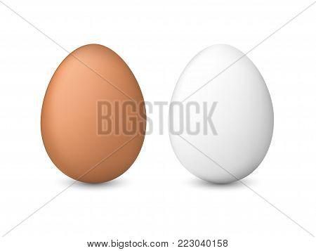 White and brown chicken eggs. Realistic vector illustration isolated on a white background.