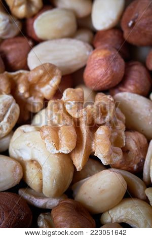 Mixed nuts including hazelnuts, walnuts, blanched almonds and cashews