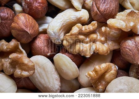 Mixed nuts including hazelnuts, walnuts, blanched almonds and cashews. Top view