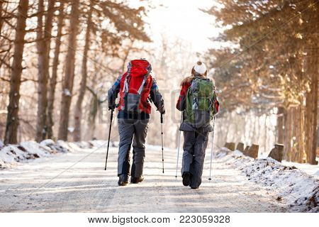 Couple of mountaineers in action in winter forest