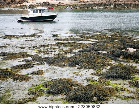ILE-DE-BREHAT, FRANCE - JULY 4, 2010: boat in Port-Clos harbour of Brehat during low tide. Ile-de-Brehat is island and commune located near Paimpol town, a mile from the northern coast of Brittany