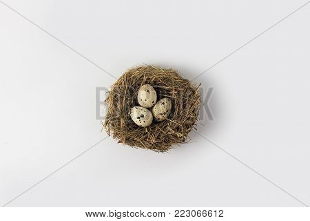 Quail Eggs In A Nest On A White Background. View From Above
