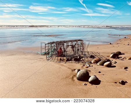 Lobster trap abandoned on the California coast