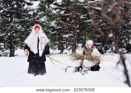 two small girls with fur coats and shawls in the Russian style are carried on a sledge armful of brushwood against the background of snow and forest.