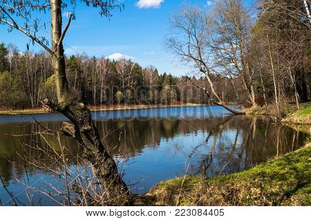 Spring landscape. Tarelochkin pond in forest park Saltykovsky, Moscow region. A picturesque corner of nature filled with the chirping of birds away from the urban noise and hustle.
