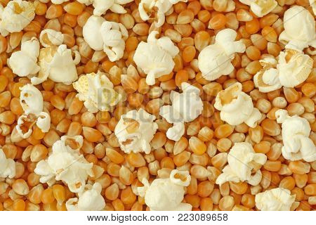 Dried corn kernels and pop corn background