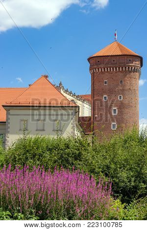 KRAKOW, POLAND, JULY 21 2016 : Wawel Royal Castle Courtyard, Krakow. Tower