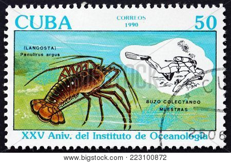 CUBA - CIRCA 1990: a stamp printed in Cuba shows Caribbean spiny lobster, panulirus argus, and specimen collection, 25th anniversary of the Oceanography Institute, circa 1990