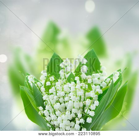 lilly of the valley flowers on gray bokeh background with copy space