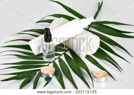 White cosmetic products and green leaf on white background. Natural beauty products for branding mock-up concept. Still life. Copy space