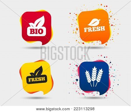 Natural fresh Bio food icons. Gluten free agricultural sign symbol. Speech bubbles or chat symbols. Colored elements. Vector