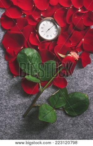 Vintage pocket clock on red rose petals - Retro style image with a rose with one petal on its stem and an old pocket watch surrounded by red rose petals, on a grey fabric background.
