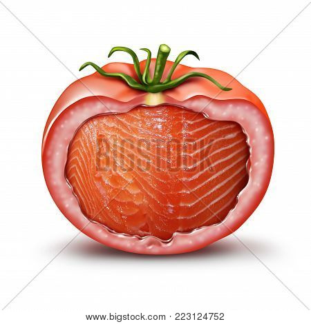 Hybrid food and GMO nutrition concept as a tomato with salmon fish inside as an agriculture genetic breeding and gene manipulation symbol in a 3D illustration style.