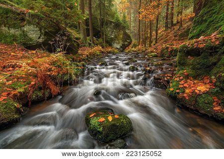 Creek Krinice in National Park Czech Switzerland, Czech Republik