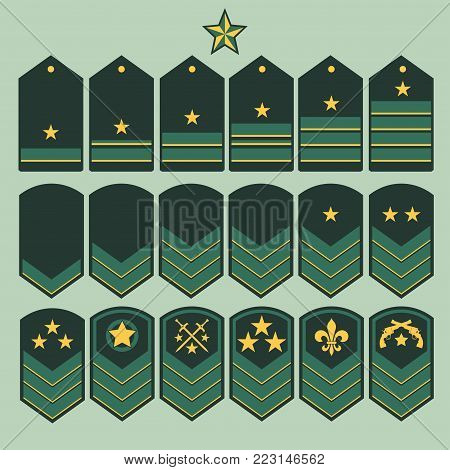 Military ranks symbol, epaulet set, Army Patches with stars, armed warrior badge typography, t-shirt graphics. vector