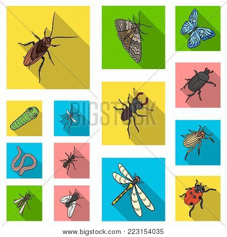 Different kinds of insects flat icons in set collection for design. Insect arthropod vector isometric symbol stock  illustration.