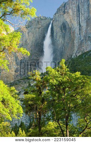 Yosemite Falls on clear morning - Yosemite National Park