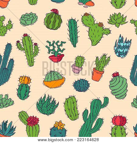 Cactus vector home nature handmade illustration of green cactus in bow plant cactaceous tree with flower different sorts and design. Cute cartoon cactus nature cactaceous vector illustration of home plant seamless pattern background