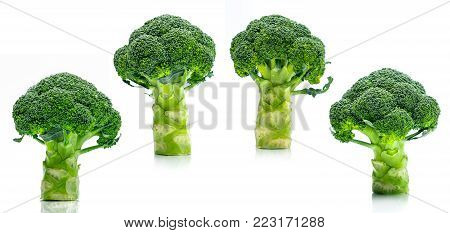 Set of green broccoli (Brassica oleracea). Vegetables natural source of betacarotene, vitamin c, vitamin k, fiber food, folate. Fresh broccoli cabbage isolated on white background.