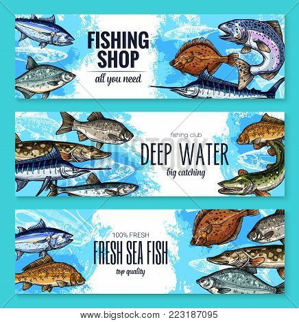 Fishing shop banners set of sea or ocean fishes. Vector sketch sea bass, marlin or tuna and navaga, horse mackerel, gilt-head bream or anchovy and eel, codfish and sardine for seafood or fish market