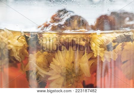 Closeup hot herbal drinks in glass jar textured background
