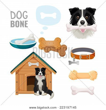 Dog bone promotional poster of zoo market goods with Border Collie that sits beside wooden doghouse and holds toy in teeth isolated vector illustrations set.