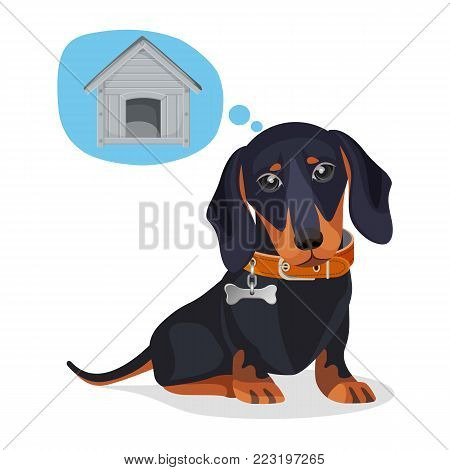Little sad puppy thinks about big wooden doghouse. Dachshund baby with dark fur and leather collar with metal bone isolated cartoon flat vector illustration.
