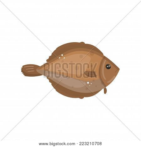 Flounder fish animal, fresh seafood cartoon vector Illustration on a white background