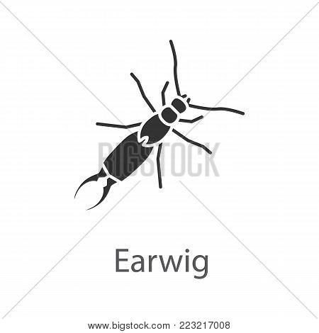 Earwig glyph icon. Silhouette symbol. Insect. Negative space. Vector isolated illustration