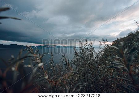 View of the sky and the mountains through a bush