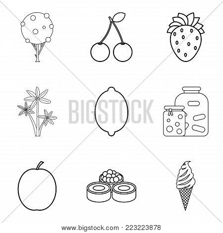 Fruit plate icons set. Outline set of 9 fruit plate vector icons for web isolated on white background