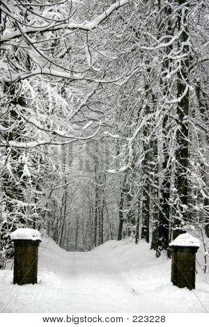 Gates To Snowcountry