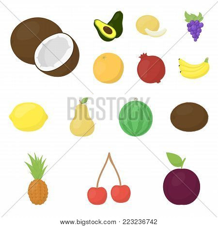 Different fruits cartoon icons in set collection for design. Fruits and vitamins vector symbol stock  illustration.