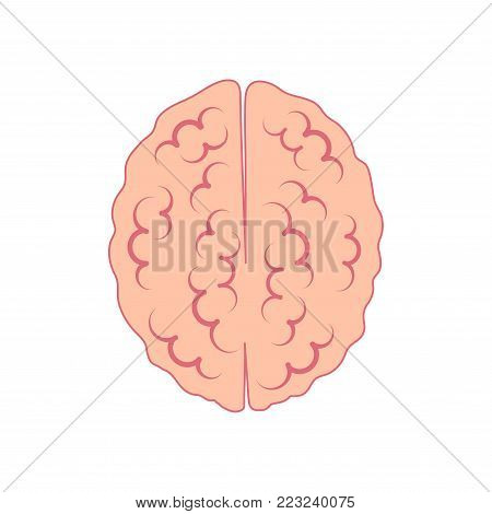 brain icon view from above. symbol of reason and logic. vector