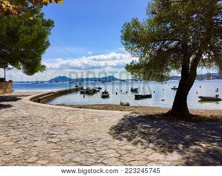 Pine Walk Port de Pollensa Mallorca Port de Pollenca Puerto Pollensa Majorca