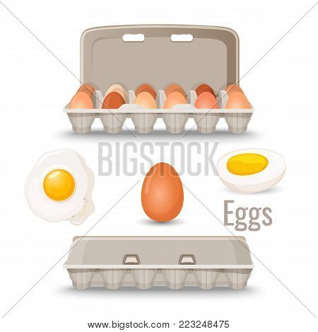 Eggs in shell inside cardboard container and cooked, fried and boiled, isolated vector illustrations on white background. Natural organic edible product.
