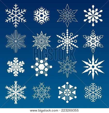 Set of winter snowflakes vector illustration icons