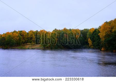 Beautiful views of the River flows through the autumn forest. Autumn landscape - the river flows through the autumn forest, playing with all the colors, the fog creeps along the river.