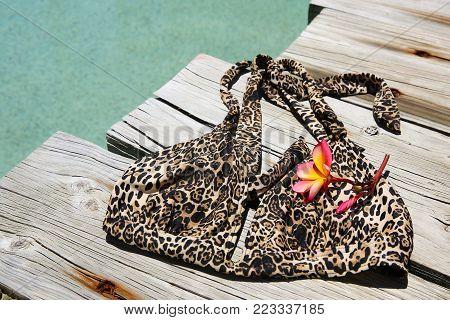 An animal print bikini top beside a swimming pool