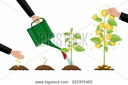 Growing money tree. Stages of growing. Gold coins on branches. Symbol of wealth. Investment, investing. Business success. Flat style vector illustration.