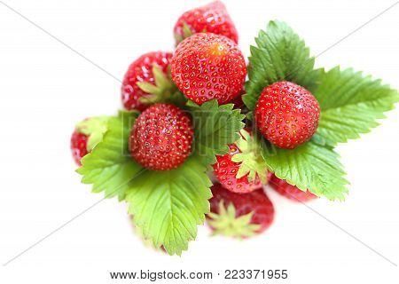 strawberry berry. ripe strawberry with green leaves isolated on white background