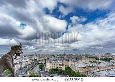 Wide angle view of gargoyle and Paris cityscape from Notre Dame Cathedral church in France