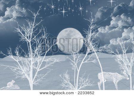 Silent White Night