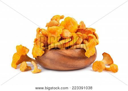 Bamboo plate full of yellow chanterelles mushrooms on a white background
